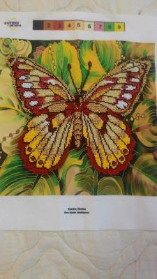 """Вышивка """"бабочка"""", бисер, размер 2020 см, стоимость 2000 рублей, Бисероплетение"""
