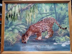 Джунгли, Картины и панно