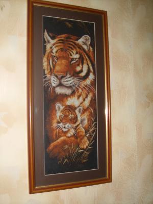тигры,60x40,3000руб