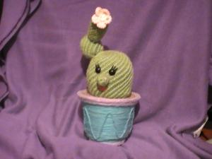 кактусик, Цветы