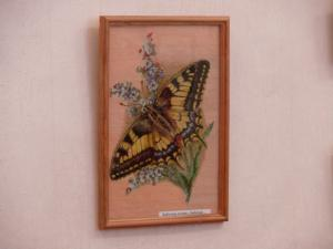 Бабочки летают...