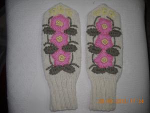 Варежки с вышивкой, Варежки, перчатки