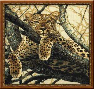 Томный леопард