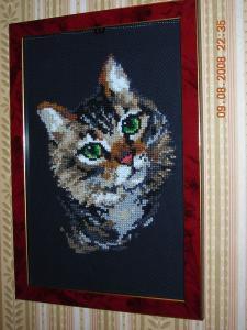 Пестрый кот